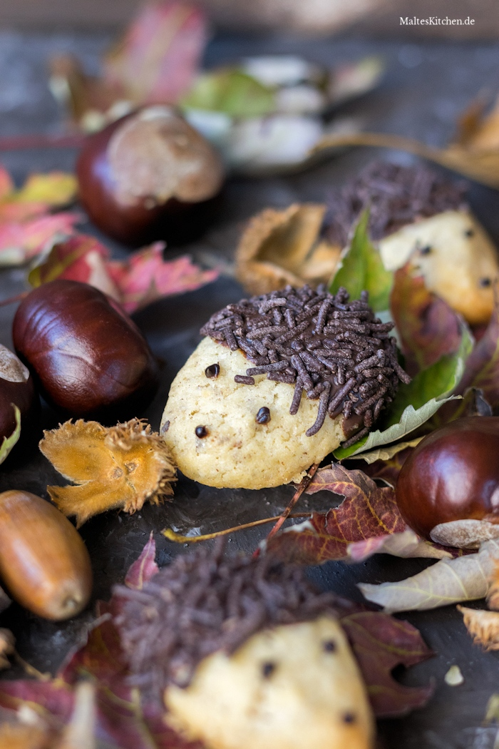 Igel Kekse mit Schokolade