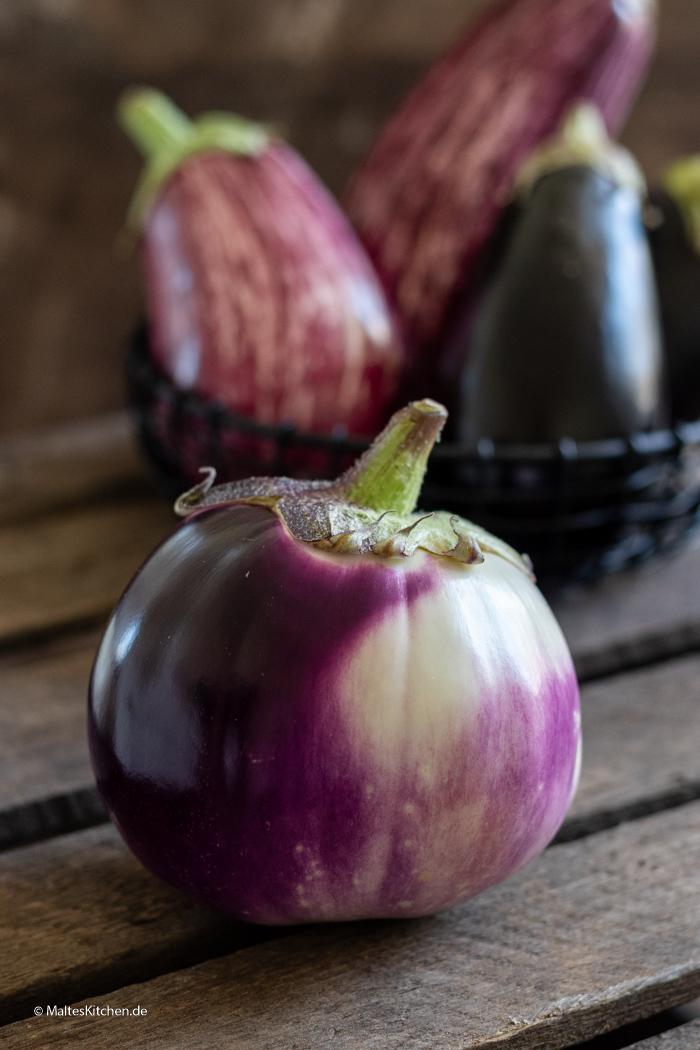 Violett bauchige Aubergine