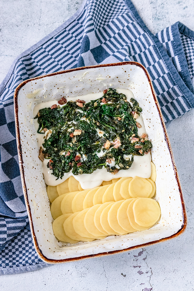 Kartoffelgratin mit Spinat-Speck-Mischung und Béchamel.